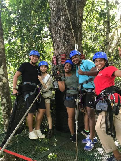 Zip lining through the forest