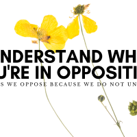 Understand Why You're In Opposition